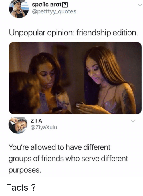 Facts, Friends, and Memes: Spoile Brat?  @petttyy_quotes  Unpopular opinion: friendship edition.  ZIA  @ZiyaXulu  You're allowed to have different  groups of friends who serve different  purposes. Facts ?