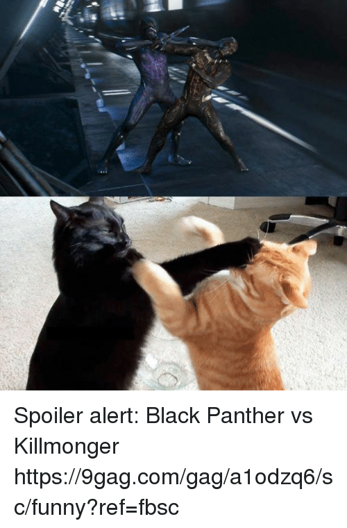 9gag, Dank, and Funny: Spoiler alert: Black Panther vs Killmonger https://9gag.com/gag/a1odzq6/sc/funny?ref=fbsc