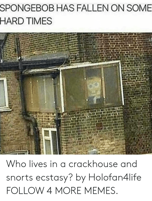 hard times: SPONGEBOB HAS FALLEN ON SOME  HARD TIMES Who lives in a crackhouse and snorts ecstasy? by Holofan4life FOLLOW 4 MORE MEMES.