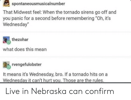 """Tumblr, Live, and Mean: spontaneousmusicalnumber  That Midwest feel: When the tornado sirens go off and  you panic for a second before remembering """"Oh, it's  Wednesday""""  thezohar  what does this mean  rvengefulobster  It means it's Wednesday, bro. If a tornado hits ona  Wednesday it can't hurt you. Those are the rules Live in Nebraska can confirm"""