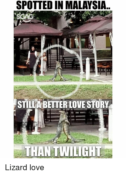 Love, Memes, and Malaysia: SPOTTED IN MALAYSIA..  STILLA BETTER LOVE STORY  THAN TWILIGHT Lizard love