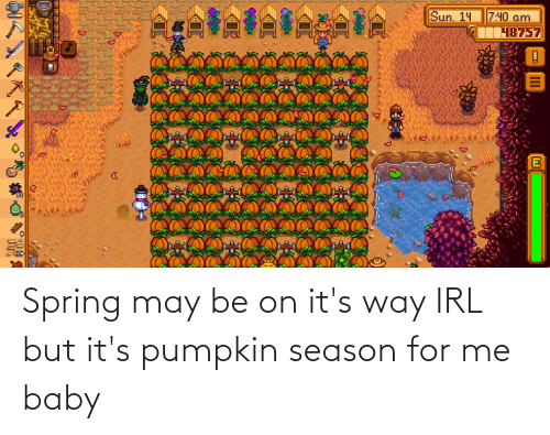 Me Baby: Spring may be on it's way IRL but it's pumpkin season for me baby