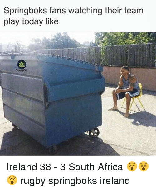Africa, Instagram, and Memes: Springboks fans watching their team  play today like  RUGBY  MEMES  Instagram Ireland 38 - 3 South Africa 😵😵😵 rugby springboks ireland