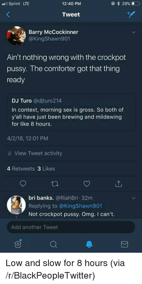Blackpeopletwitter, Omg, and Pussy: Sprint LTE  12:40 PM  Tweet  Barry McCockinner  @KingShawn901  Ain't nothing wrong with the crockpot  pussy. The comtorter got that thing  ready  DJ Turo @djturo214  In context, morning sex is gross. So both of  y'all have just been brewing and mildewing  for like 8 hours.  4/2/18, 12:01 PM  li View Tweet activity  4 Retweets 3 Likes  bri banks. @RiahBri 32m  Replying to @KingShawn901  Not crockpot pussy. Omg. I can't.  Add another Tweet <p>Low and slow for 8 hours (via /r/BlackPeopleTwitter)</p>