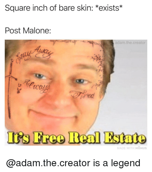 Post Malone, Free, and Square: Square inch of bare skin: *exists*  Post Malone:  adam.the.creator  Iis Free Real Estate  MADE WITH MOMUS @adam.the.creator is a legend