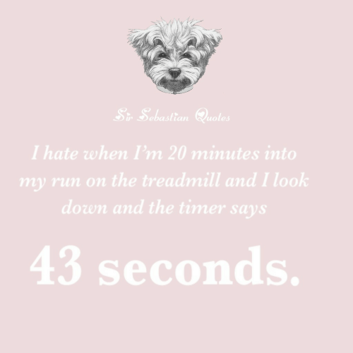 Run, Quotes, and Treadmill: Sr Sebastian Quotes  I hate when I'm 20 minutes into  my run on the treadmill and I look  down and the timer says  43 seconds.