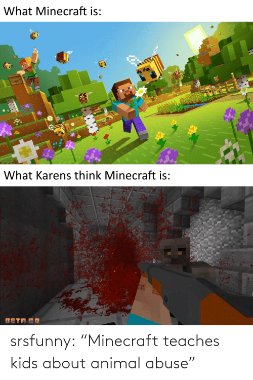 "Kids: srsfunny:  ""Minecraft teaches kids about animal abuse"""