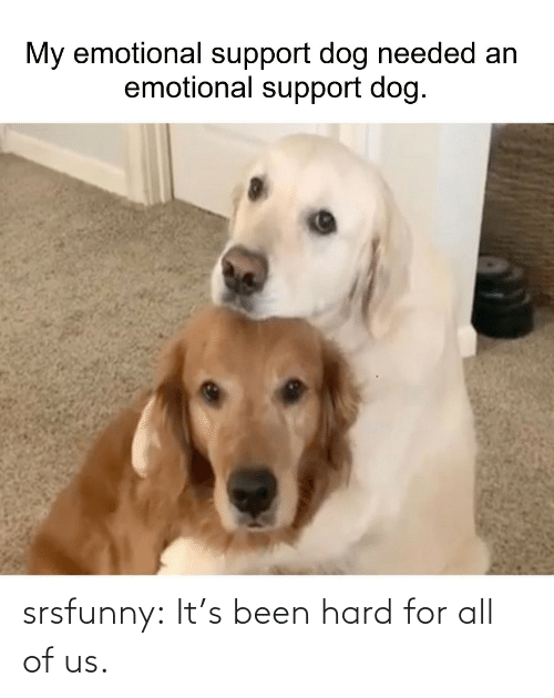 Its Been: srsfunny:  It's been hard for all of us.