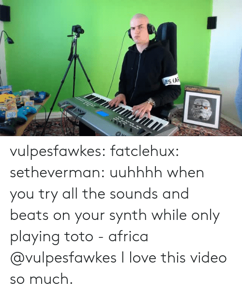 the sounds: SS (AF vulpesfawkes:  fatclehux:  setheverman: uuhhhh when you try all the sounds and beats on your synth while only playing toto - africa @vulpesfawkes  I love this video so much.
