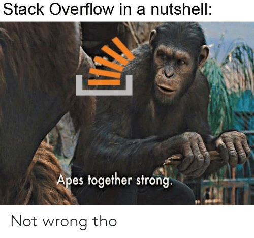 apes: Stack Overflow in a nutshell:  Apes together strong. Not wrong tho