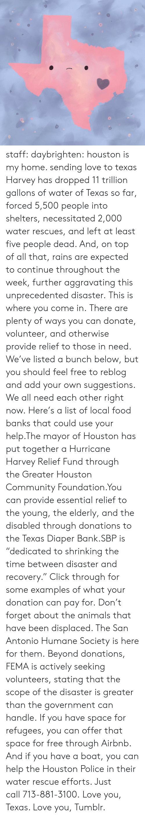 """Animals, Click, and Community: staff:  daybrighten: houston is my home. sending love to texas Harvey has dropped 11 trillion gallons of water of Texas so far, forced 5,500 people into shelters, necessitated 2,000 water rescues, and left at least five people dead. And, on top of all that, rains are expected to continue throughout the week, further aggravating this unprecedented disaster.This is where you come in.There are plenty of ways you can donate, volunteer, and otherwise provide relief to those in need. We've listed a bunch below, but you should feel free to reblog and add your own suggestions. We all need each other right now.Here's a list of local food banksthat could use your help.The mayor of Houston has put together a Hurricane Harvey Relief Fund through theGreater Houston Community Foundation.You can provide essential relief to the young, the elderly, and the disabled through donations to theTexas Diaper Bank.SBPis """"dedicated to shrinking the time between disaster and recovery."""" Click through for some examples of what your donation can pay for.Don't forget about the animals that have been displaced. TheSan Antonio Humane Societyis here for them.Beyond donations, FEMA is actively seeking volunteers, stating that the scope of the disaster is greater than the government can handle.If you have space for refugees, you can offer that space for free through Airbnb. And if you have a boat, you can help the Houston Police in their water rescue efforts. Just call713-881-3100.Love you, Texas. Love you, Tumblr."""