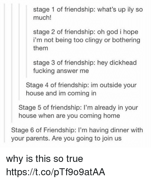 Fucking, God, and Parents: stage 1 of friendship: what's up ily so  much!  stage 2 of friendship: oh god i hope  i'm not being too clingy or bothering  them  stage 3 of friendship: hey dickhead  fucking answer me  Stage 4 of friendship: im outside your  house and im coming in  Stage 5 of friendship: I'm already in your  house when are you coming home  Stage 6 of Friendship: I'm having dinner with  your parents. Are you going to join us why is this so true https://t.co/pTf9o9atAA