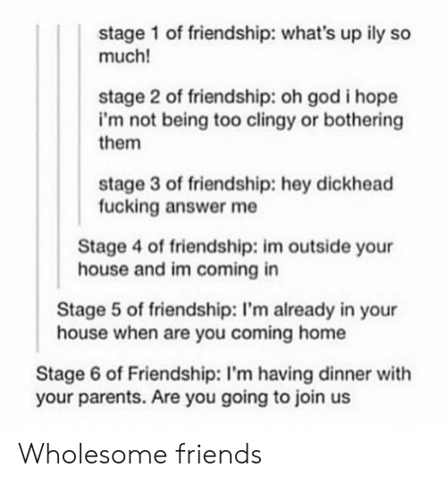 Friends, Fucking, and God: stage 1 of friendship: what's up ily so  much!  stage 2 of friendship: oh god i hope  i'm not being too clingy or bothering  them  stage 3 of friendship: hey dickhead  fucking answer me  Stage 4 of friendship: im outside your  house and im coming in  Stage 5 of friendship: I'm already in your  house when are you coming home  Stage 6 of Friendship: I'm having dinner with  your parents. Are you going to join us Wholesome friends