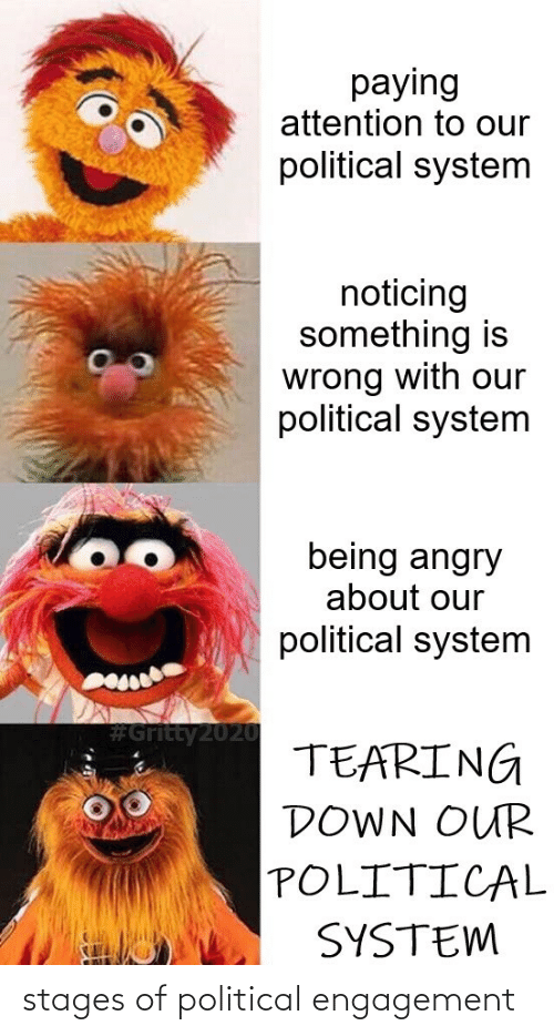 political: stages of political engagement