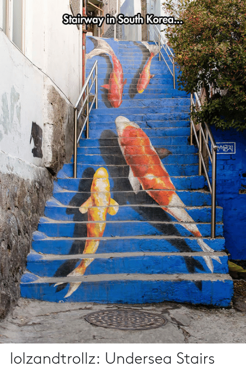 Tumblr, Blog, and South Korea: Stairway in South Korea lolzandtrollz:  Undersea Stairs