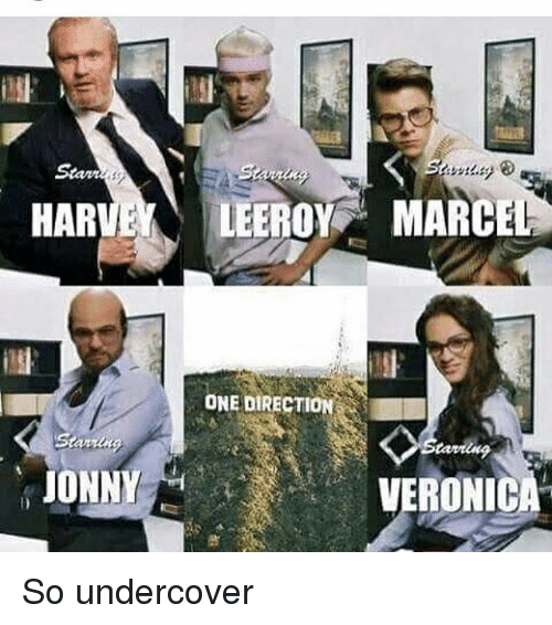 Memes, One Direction, and Stan: Stan  HARVELEEROY MARCE  ONE DIRECTION  JONNY  VERONICA So undercover