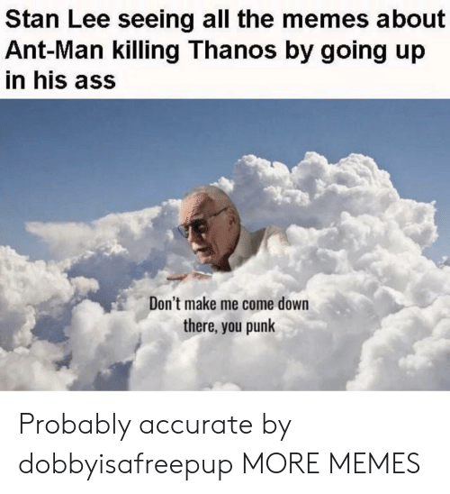 Ass, Dank, and Memes: Stan Lee seeing all the memes about  Ant-Man killing Thanos by going up  in his ass  Don't make me come down  there, you punk Probably accurate by dobbyisafreepup MORE MEMES