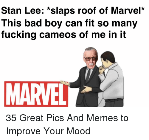 Bad, Fucking, and Memes: Stan Lee: *slaps roof of Marvel*  This bad boy can fit so many  fucking cameos of me in it  MARVELL 35 Great Pics And Memes to Improve Your Mood