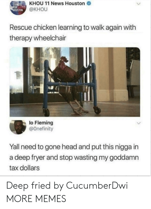 Dank, Head, and Memes: STANDSKHOU 11 News Houston  OUSTON  @KHOU  Rescue chicken learning to walk again with  therapy wheelchair  lo Fleming  @Onefinity  Yall need to gone head and put this nigga in  a deep fryer and stop wasting my goddamn  tax dollars Deep fried by CucumberDwi MORE MEMES