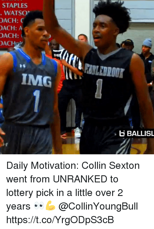 Lottery, Memes, and Staples: STAPLES  WATSO  OACH:  ACH: A  OACH:  ACH  IMG  E BALLISL Daily Motivation: Collin Sexton went from UNRANKED to lottery pick in a little over 2 years 👀💪 @CollinYoungBull https://t.co/YrgODpS3cB
