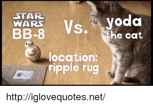 Star Wars, Http, and Star: STAR  WARS  BB-8 Vs.  the cat  location:  ripple rug http://iglovequotes.net/