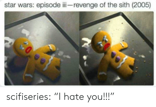 "revenge of the sith: star wars: episode iii revenge of the sith (2005) scifiseries:  ""I hate you!!!"""
