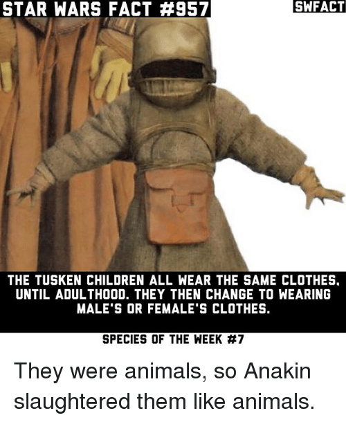 Animals, Children, and Clothes: STAR WARS FACT #957  SWFACT  THE TUSKEN CHILDREN ALL WEAR THE SAME CLOTHES.  UNTIL ADULTHOOD. THEY THEN CHANGE TO WEARING  MALE'S OR FEMALE'S CLOTHES.  SPECIES OF THE WEEK They were animals, so Anakin slaughtered them like animals.