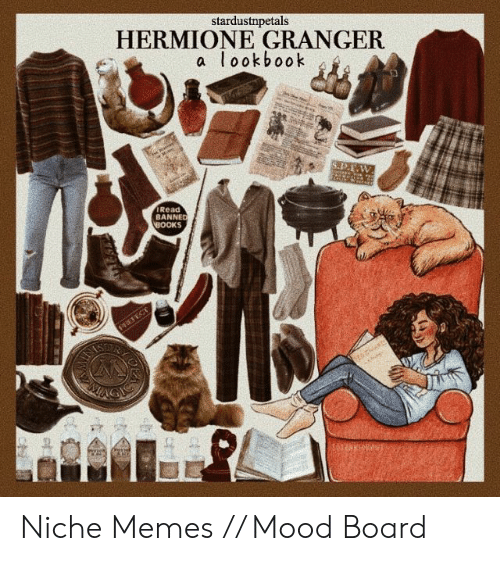 Books, Hermione, and Memes: stardustnpetals  HERMIONE GRANGER  a lookbook  S.1P.E  IRead  BANNED  BOOKS  PEEFECT Niche Memes // Mood Board