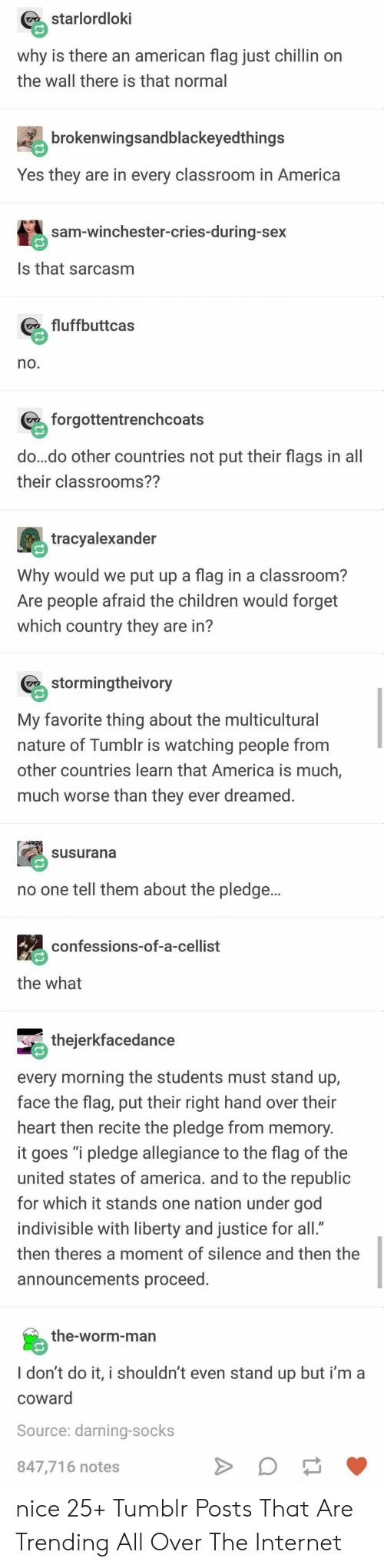 """America, Children, and God: starlordloki  why is there an american flag just chillin on  the wall there is that normal  brokenwingsandblackeyedthings  Yes they are in every classroom in America  sam-winchester-cries-during-sex  Is that sarcasm  fluffbuttcas  no.  forgottentrenchcoats  do...do other countries not put their flags in all  their classrooms??  tracyalexander  Why would we put up a flag in a classroom?  Are people afraid the children would forget  which country they are in?  stormingtheivory  My favorite thing about the multicultural  nature of Tumblr is watching people from  other countries learn that America is much,  much worse than they ever dreamed.  susurana  no one tell them about the pledge...  confessions-of-a-cellist  the what  thejerkfacedance  every morning the students must stand up,  face the flag, put their right hand over their  heart then recite the pledge from memory.  it goes """"i pledge allegiance to the flag of the  united states of america. and to the republic  for which it stands one nation under god  indivisible with liberty and justice for all.""""  then theres a moment of silence and then the  announcements proceed.  the-worm-man  I don't do it, i shouldn't even stand up but i'm a  coward  Source: darning-socks  847,716 notes nice 25+ Tumblr Posts That Are Trending All Over The Internet"""