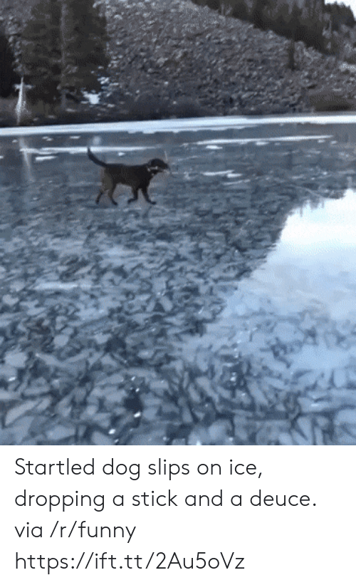 deuce: Startled dog slips on ice, dropping a stick and a deuce. via /r/funny https://ift.tt/2Au5oVz