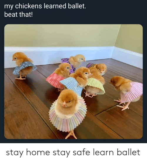 Ballet: stay home stay safe learn ballet