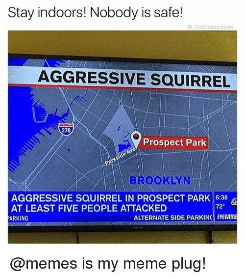 Funny, Meme, and Memes: Stay indoors! Nobody is safe!  @theblessedone  AGGRESSIVE SQUIRREL  278  Prospect Park  BROOKLYN  AGGRESSIVE SQUIRREL IN PROSPECT PARK 16:38  AT LEAST FIVE PEOPLE ATTACKED  ARKING  72  ALTERNATE SIDE PARKINC EYEWITN @memes is my meme plug!
