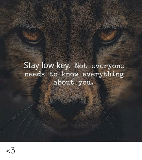 Low key: Stay low key. Not everyone  needs to know everything  about you <3