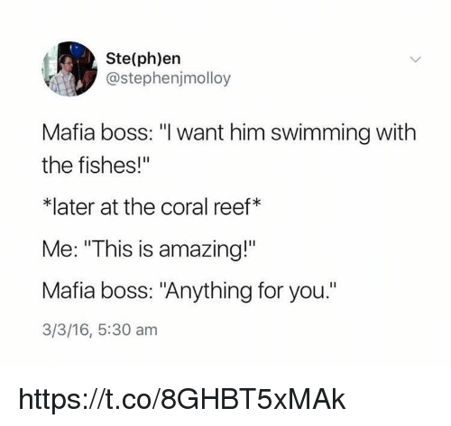 """Memes, Amazing, and 16.5: Ste(ph)en  @stephenjmolloy  Mafia boss: """"I want him swimming with  the fishes!""""  *later at the coral reef*  Me: """"This is amazing!""""  Mafia boss: """"Anything for you.""""  3/3/16, 5:30 am https://t.co/8GHBT5xMAk"""