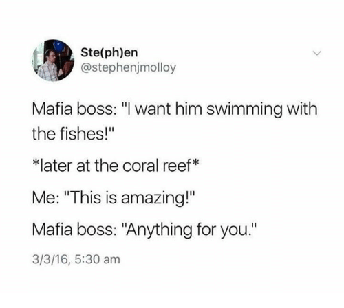 """Amazing, 16.5, and Swimming: Ste(ph)en  @stephenjmolloy  Mafia boss: """"I want him swimming with  the fishes!""""  *later at the coral reef*  Me: """"This is amazing!""""  Mafia boss: """"Anything for you.""""  3/3/16, 5:30 am"""