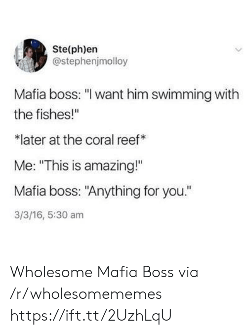 "Amazing, Wholesome, and 16.5: Ste(ph)en  @stephenjmolloy  Mafia boss: ""I want him swimming with  the fishes!""  later at the coral reef  Me: ""This is amazing!""  Mafia boss: ""Anything for you.""  3/3/16, 5:30 am Wholesome Mafia Boss via /r/wholesomememes https://ift.tt/2UzhLqU"
