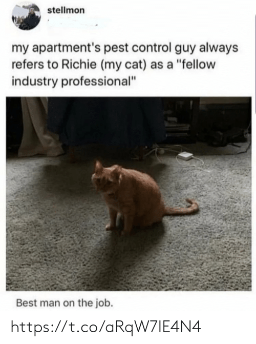 "Memes, Control, and Best: stellmon  my apartment's pest control guy always  refers to Richie (my cat) as a ""fellow  industry professional""  Best man on the job. https://t.co/aRqW7IE4N4"