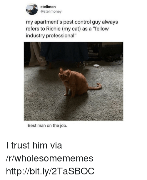 "Control, Best, and Http: stellmon  @stellmoney  my apartment's pest control guy alway:s  refers to Richie (my cat) as a ""fellow  industry professional""  Best man on the job. I trust him via /r/wholesomememes http://bit.ly/2TaSBOC"