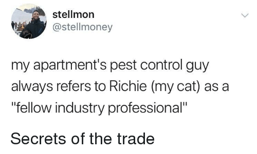 "Control, Cat, and Secrets: stellmon  @stellmoney  my apartment's pest control guy  always refers to Richie (my cat) as a  ""fellow industry professional"" Secrets of the trade"
