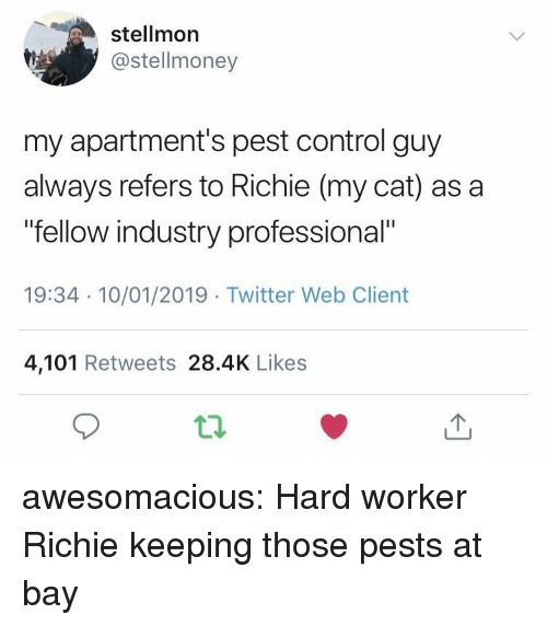 "Tumblr, Twitter, and Control: stellmor  @stellmoney  my apartment's pest control guy  always refers to Richie (my cat) as a  fellow industry professional""  19:34 10/01/2019 Twitter Web Client  4,101 Retweets 28.4K Likes awesomacious:  Hard worker Richie keeping those pests at bay"