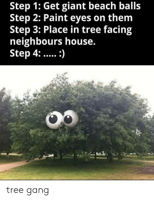 Gang, Beach, and Giant: Step 1: Get giant beach balls  Step 2: Paint eyes on them  Step 3: Place in tree facing  neighbours house.  Step 4:: tree gang