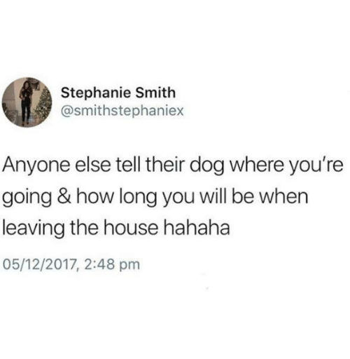 Relationships, House, and How: Stephanie Smith  @smithstephaniex  Anyone else tell their dog where you're  going & how long you will be when  leaving the house hahaha  05/12/2017, 2:48 pm