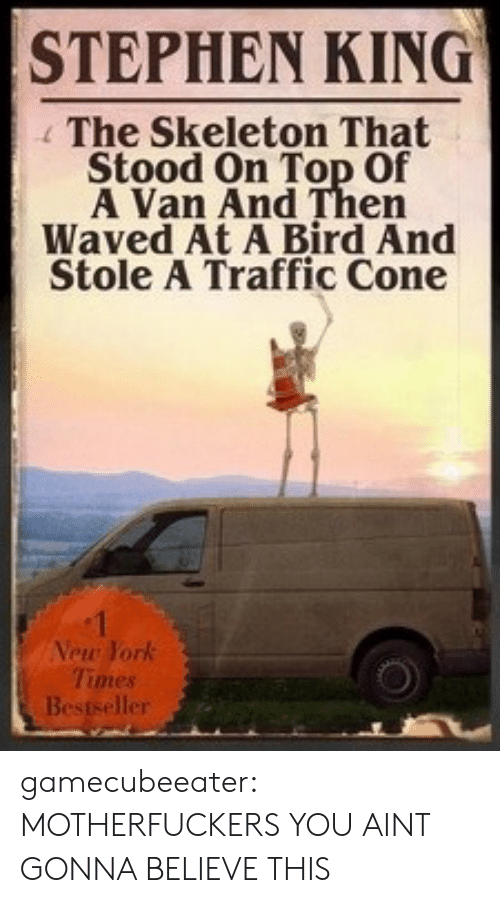Waved: STEPHEN KING  The Skeleton That  Stood On Top Of  A Van And Then  Waved At A Bird And  Stole A Traffic Cone  Vew York  Times  er gamecubeeater:  MOTHERFUCKERS YOU AINT GONNA BELIEVE THIS