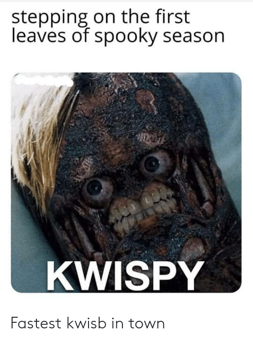 Spooky, First, and Town: stepping on the first  leaves of spooky season  KWISPY Fastest kwisb in town