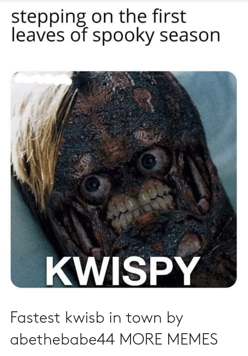 Dank, Memes, and Target: stepping on the first  leaves of spooky season  KWISPY Fastest kwisb in town by abethebabe44 MORE MEMES