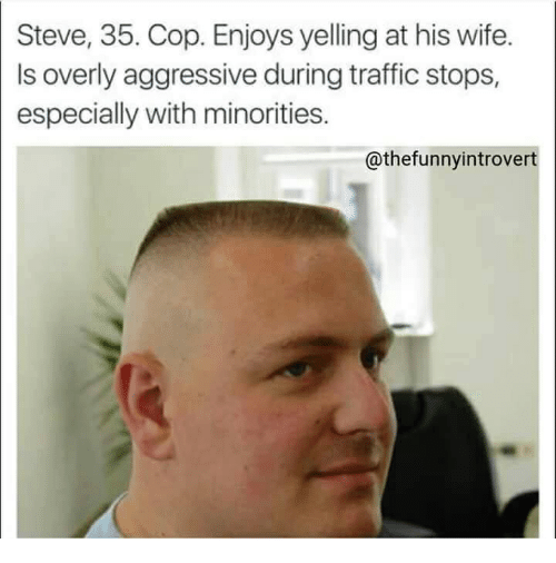 Traffic, Wife, and Aggressive: Steve, 35. Cop. Enjoys yelling at his wife.  Is overly aggressive during traffic stops,  especially with minorities.  @thefunnyintrovert