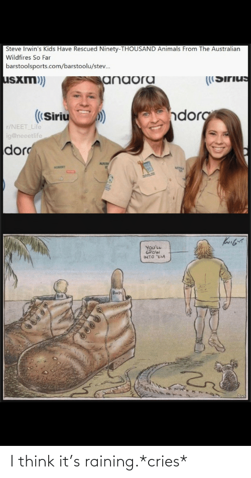 Australian: Steve Irwin's Kids Have Rescued Ninety-THOUSAND Animals From The Australian  Wildfires So Far  barstoolsports.com/barstoolu/stev.  usxm)  ((Sirius  anaora  dorg  ((Siriu  r/NEET Life  ig@neeetlife  dor  AUST  RORORT  You'LL  GROW  INTO 'EM  BwD I think it's raining.*cries*