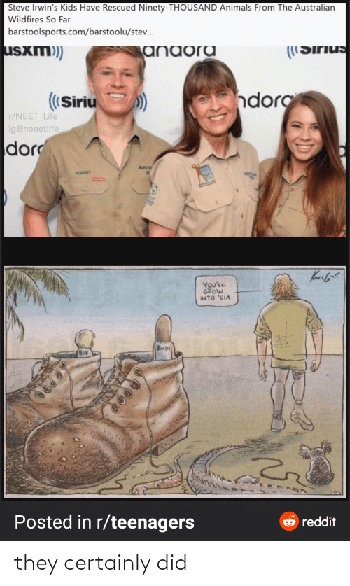 steve: Steve Irwin's Kids Have Rescued Ninety-THOUSAND Animals From The Australian  Wildfires So Far  barstoolsports.com/barstoolu/stev.  usxm)  anaora  ((Sirius  ndorg  ((Siriu  r/NEET_Life  ig@neeetlife  dor  AUST  ROBERT  ATIM  You'LL  GROW  INTO 'EM  BINDI  BOB  Posted in r/teenagers  e reddit they certainly did