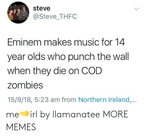Dank, Eminem, and Memes: steve  @Steve_THFC  Eminem makes music for 14  year olds who punch the wall  when they die on COD  zombies  15/9/18, 5:23 am from Northern Ireland,.. me🤜irl by llamanatee MORE MEMES