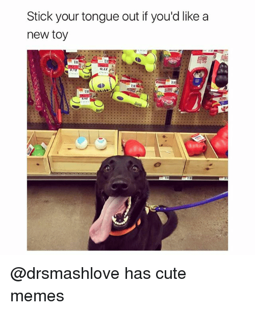 cute memes: Stick your tongue out if you'd like a  new toy @drsmashlove has cute memes